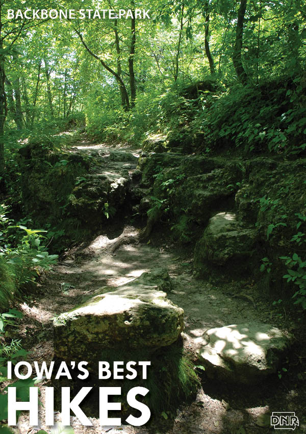 Iowa's Best Hikes: Backbone State Park | Iowa DNR