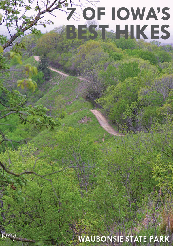 Waubonsie State Park offers one of Iowa's most unique and best hikes | Iowa DNR