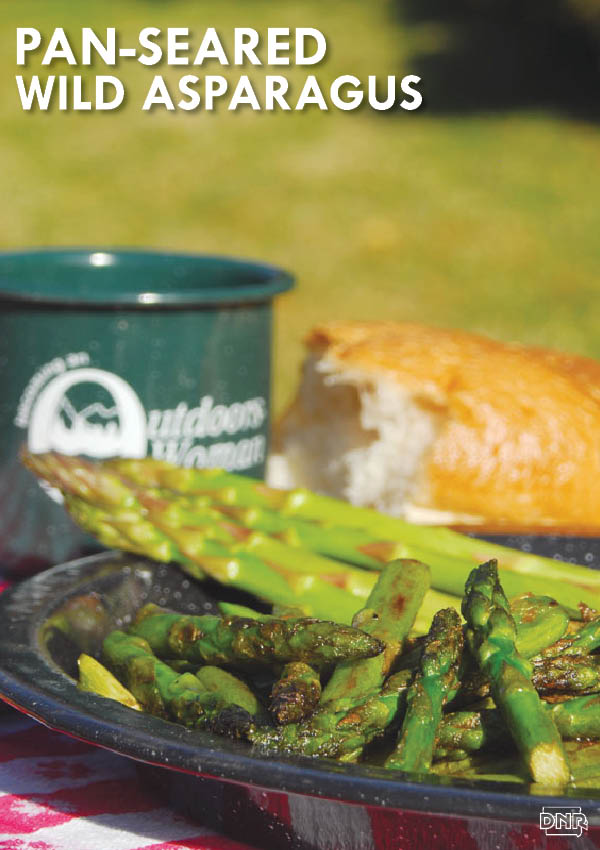 Mouth-watering pan-seared wild asparagus recipe (works for store bought asparagus, too) and lots of other great spring recipes | Iowa DNR