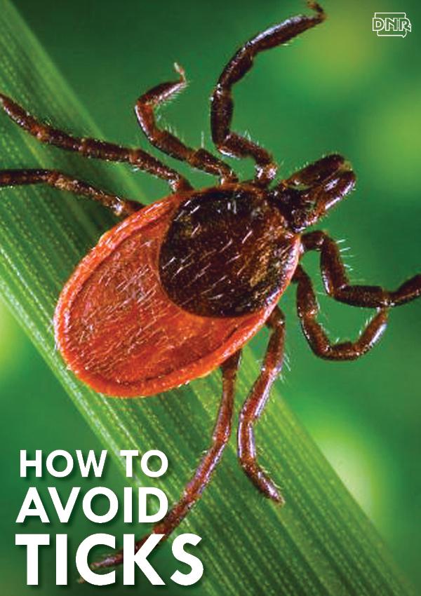 tips and tricks for avoiding ticks   Iowa DNR