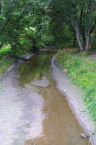 Sediment fills in Muchakinock Creek in southeast Iowa.