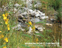 2010 Watershed Success Cover