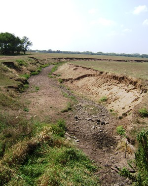 Dry streambed during drought of 2012